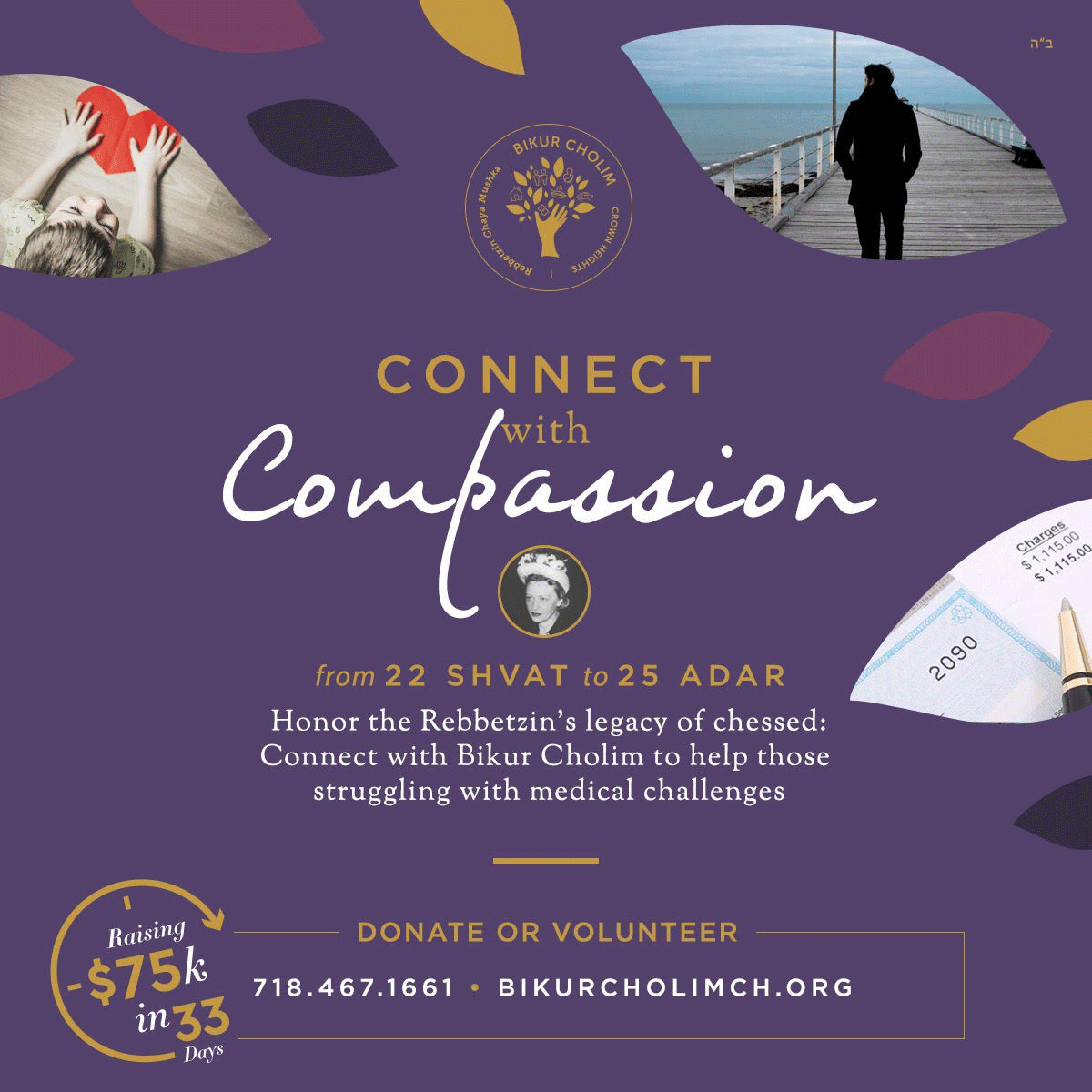 Donate or Volunteer - Connect with Compassion